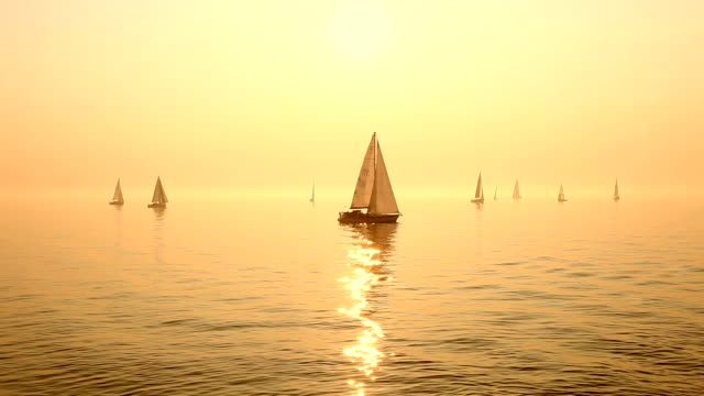 Sailboats on Sea video