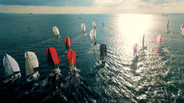 Sailing Race Aerial View video