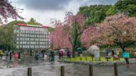 Sakura in front of Ueno park , Ueno Tokyo , Japan , Timelapse movement video
