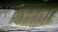 Salmon attempt to jump falls. 3 shots. video