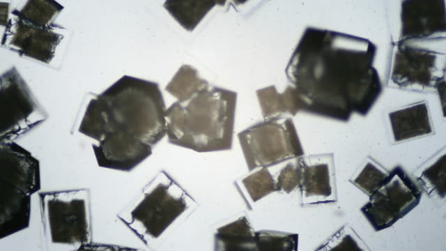 Salt crystallizing UHDV video