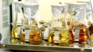 Sample flasks on a laboratory shaker video