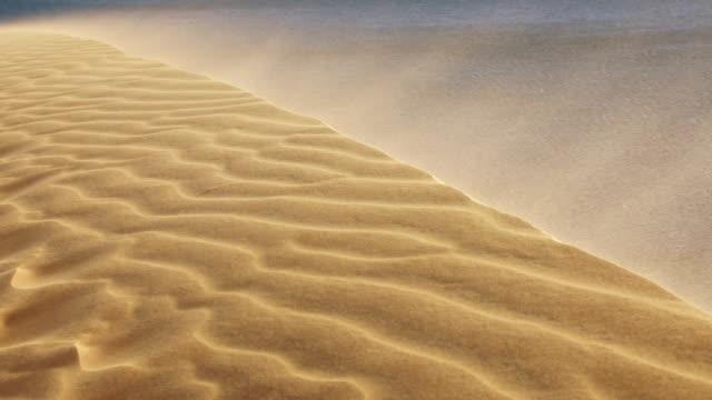 Sand blowing over the dunes in the desert video