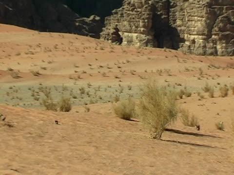 Sand in Wadi Rum desert video