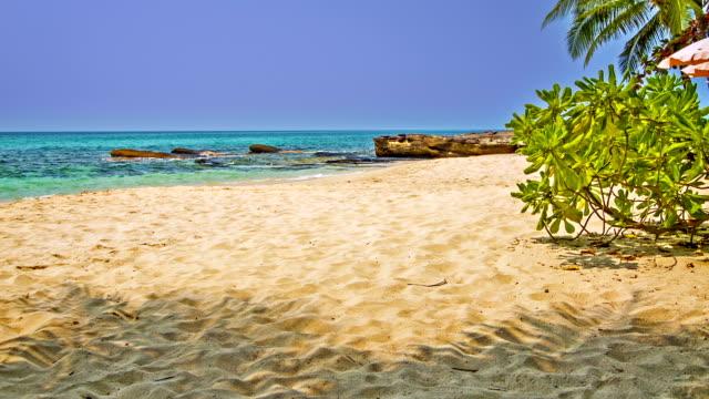 Sand on the beach video