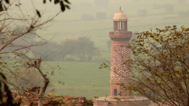 Sandstone Tower. Architecture and Goat: India video
