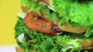Sandwich Close Up video