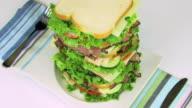 Sandwich Zoom Out HD video