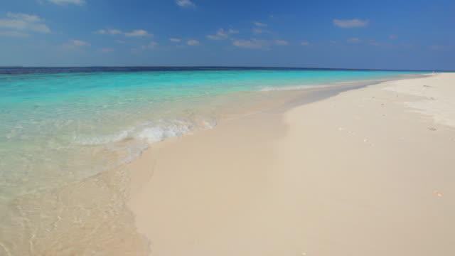sandy tropical beach video