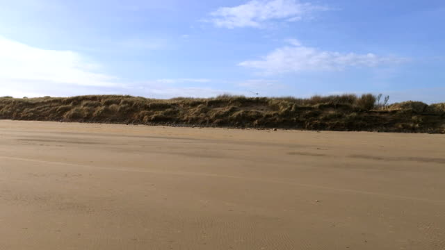 Sandy yellow beach contrasts sharply with bright blue sky video