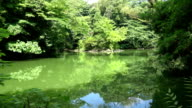 Sanshiro Pond at the university of Tokyo video