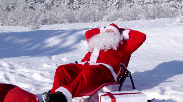 Santa Claus enjoying frosty sunny day in snow covered winter forest video