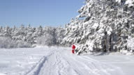 Santa Claus with gifts bag walking in snow through the winter forest video