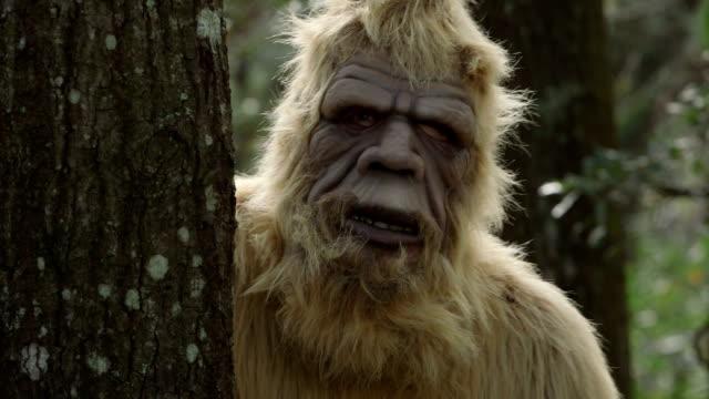 Sasquatch in the woods video