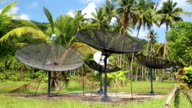 Satellite dishes in wood amongst palm trees on the Koh-Chang island in Thailand video