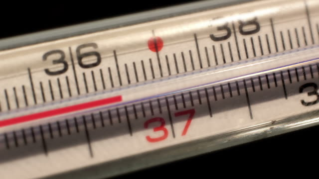 saturday night fever thermometer measures the temperatures rising video