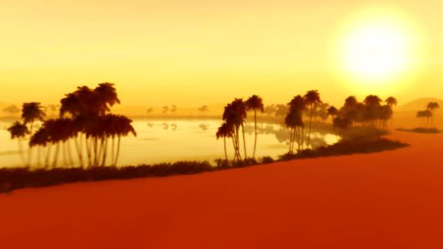 Saudi Arabia African Sahara Desert Sandstorm Dunes Oasis Sunset Egypt video