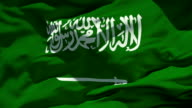 Saudi Arabian Flag video