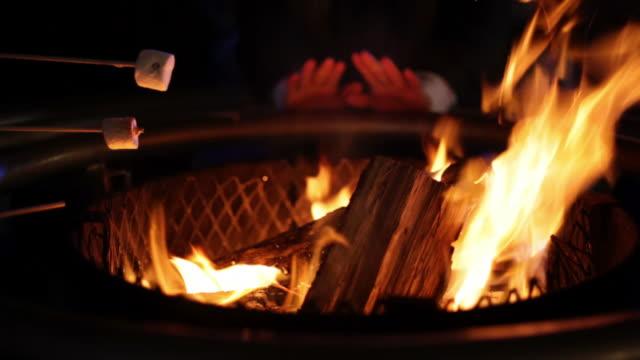 Sausages and marshmallows over bonfire (medium shot) video