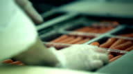 Sausages on a conveyor video