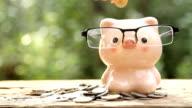 saving money piggy bank video