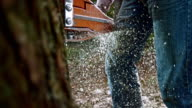 SLO MO Sawdust particles flying as chainsaw cuts a tree video