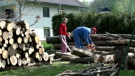 Sawing wood logs for winter video