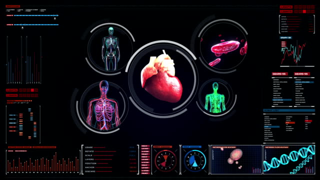 Scanning blood vessel, lymphatic, heart, circulatory system in digital display. Blue X-ray view. video