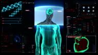 Scanning Brain male body in digital display dashboard. X-ray. video
