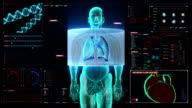 Scanning front body. Human lungs, Pulmonary in digital display dashboard. video