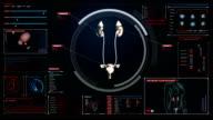 Scanning kidneys in digital display dashboard. X-ray view. video