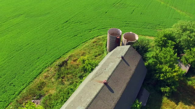 Scenic Abandoned Rustic Barn and Silos video