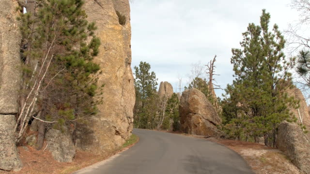 POV: Scenic drive on Needles Highway past majestic rocky spires in Black Hills video