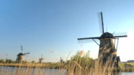 CLOSE UP: Scenic look of old antique Dutch windmills from behind grass blades video