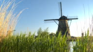 CLOSE UP: Scenic overlook of beautiful old Dutch windmills near big river video