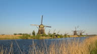 Scenic view of old antique Dutch windmills on vast grass field from riverbank video