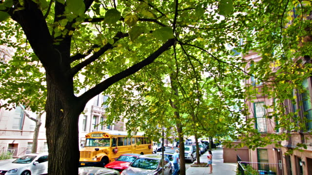 School bus on a New York street video