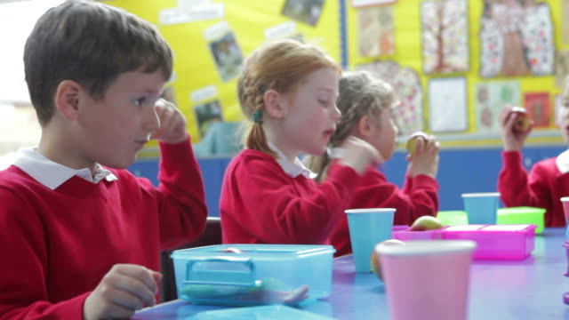 Schoolchildren Sitting At Table Eating Packed Lunch video