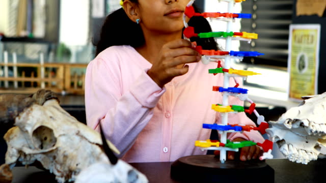 Schoolkid experimenting molecule model in laboratory 4k video