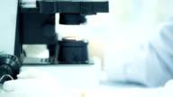 Scientist and bio lab experiment video