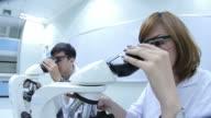 HD : Scientist Couple using microscope video