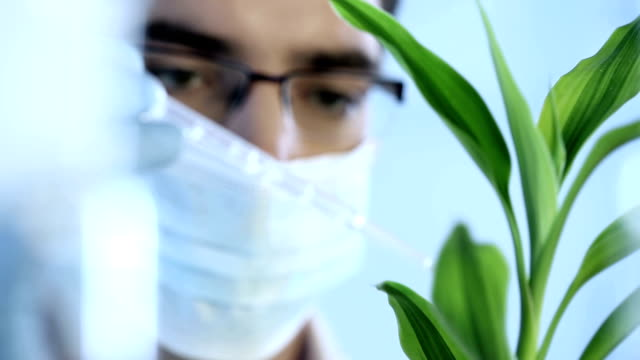 A scientist doing an experiment on plants video