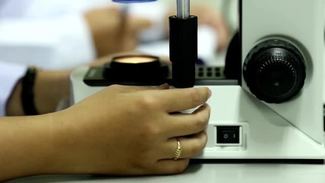 Scientist looks into microscope video