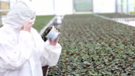 Scientist standing at the greenhouse holding a plant video