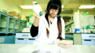 Scientist working at laboratory video