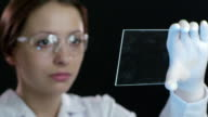 Scientist working at the chemistry laboratory video