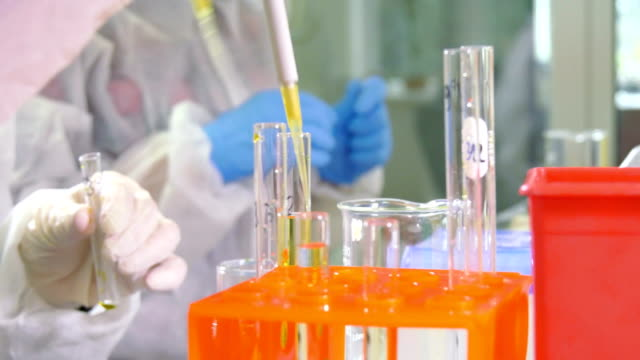 Scientist working at the laboratory, close-up video