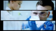 Scientist working at the laboratory. Split screen video