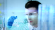 Scientist working at the laboratory video