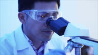 Scientist working at the laboratory. video